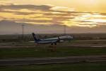 こうきさんが、新千歳空港で撮影した全日空 737-881の航空フォト(写真)