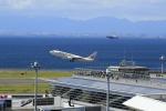 ☆ライダーさんが、中部国際空港で撮影した日本航空 737-846の航空フォト(写真)