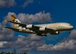幻想航空 Air Gensouさんが、成田国際空港で撮影したエティハド航空 A380-861の航空フォト(写真)