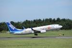 MIRAGE E.Rさんが、鳥取空港で撮影した全日空 737-881の航空フォト(写真)