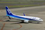 Wasawasa-isaoさんが、中部国際空港で撮影した全日空 737-781の航空フォト(写真)