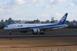 kuro2059さんが、伊丹空港で撮影した全日空 777-281/ERの航空フォト(写真)