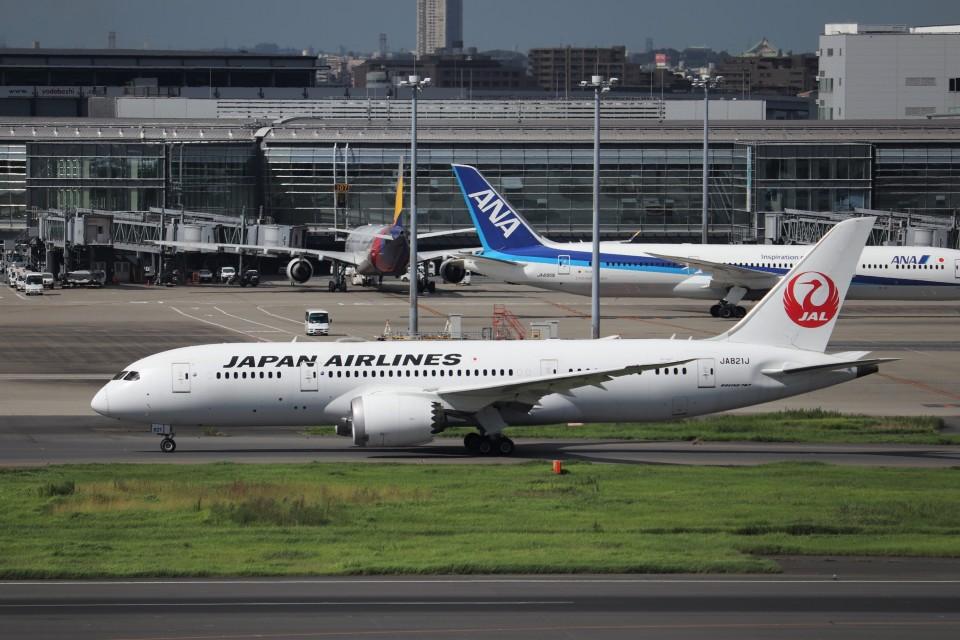 KAZFLYERさんの日本航空 Boeing 787-8 Dreamliner (JA821J) 航空フォト