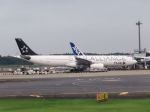 cooymdさんが、成田国際空港で撮影したタイ国際航空 A330-343Xの航空フォト(写真)
