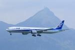 garrettさんが、香港国際空港で撮影した全日空 777-381/ERの航空フォト(写真)