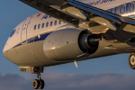 Foxfireさんが、伊丹空港で撮影した全日空 737-8ALの航空フォト(飛行機 写真・画像)
