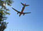 Dreamer-K'さんが、庄内空港で撮影したジェットスター・ジャパン A320-232の航空フォト(写真)