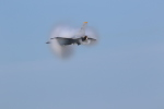 Tango Alphaさんが、三沢飛行場で撮影したアメリカ空軍 F-16CM-50-CF Fighting Falconの航空フォト(写真)