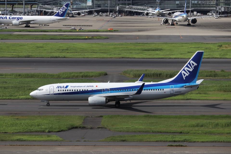 KAZFLYERさんの全日空 Boeing 737-800 (JA83AN) 航空フォト
