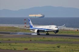 ゆなりあさんが、中部国際空港で撮影した全日空 787-9の航空フォト(飛行機 写真・画像)
