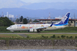 S.Chobyさんが、富山空港で撮影した全日空 737-881の航空フォト(写真)