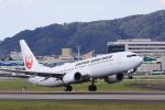Fly Yokotayaさんが、伊丹空港で撮影した日本航空 737-846の航空フォト(写真)