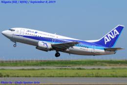 Chofu Spotter Ariaさんが、新潟空港で撮影した全日空 737-54Kの航空フォト(写真)