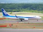 むらさめさんが、新千歳空港で撮影した全日空 737-881の航空フォト(写真)