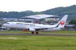 Kuuさんが、高知空港で撮影した日本航空 737-846の航空フォト(写真)