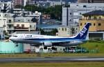 にしやんさんが、伊丹空港で撮影した全日空 737-8ALの航空フォト(写真)