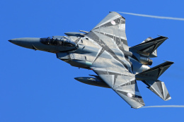 オポッサムさんが、小松空港で撮影した航空自衛隊 F-15DJ Eagleの航空フォト(飛行機 写真・画像)