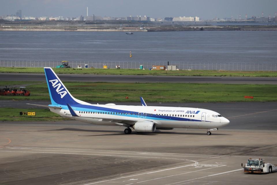 KAZFLYERさんの全日空 Boeing 737-800 (JA71AN) 航空フォト