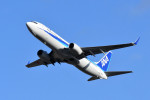 kuro2059さんが、伊丹空港で撮影した全日空 737-881の航空フォト(飛行機 写真・画像)