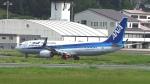 撮り撮り人さんが、岡山空港で撮影した全日空 737-8ALの航空フォト(写真)