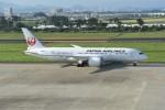 kumagorouさんが、仙台空港で撮影した日本航空 787-8 Dreamlinerの航空フォト(写真)