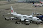 Wasawasa-isaoさんが、中部国際空港で撮影した日本航空 737-846の航空フォト(写真)