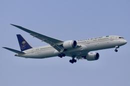 パピヨンさんが、シンガポール・チャンギ国際空港で撮影したサウディア 787-9の航空フォト(飛行機 写真・画像)