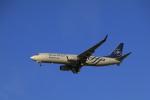 しかばねさんが、仁川国際空港で撮影した大韓航空 737-8B5の航空フォト(写真)