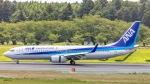 ケロリ/Keroriさんが、成田国際空港で撮影した全日空 737-881の航空フォト(写真)