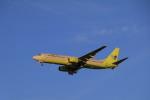 しかばねさんが、仁川国際空港で撮影したジンエアー 737-86Nの航空フォト(写真)