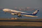 メンチカツさんが、羽田空港で撮影した全日空 777-281/ERの航空フォト(写真)