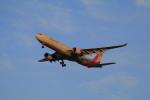 しかばねさんが、仁川国際空港で撮影したアシアナ航空 A330-323Xの航空フォト(写真)