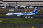 やつはしさんが、羽田空港で撮影した全日空 737-8ALの航空フォト(写真)
