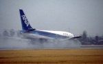 LEVEL789さんが、松山空港で撮影した全日空 737-281の航空フォト(飛行機 写真・画像)
