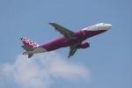 OMAさんが、香港国際空港で撮影したピーチ A320-214の航空フォト(飛行機 写真・画像)