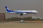 メンチカツさんが、成田国際空港で撮影した全日空 767-381/ERの航空フォト(写真)