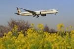 メンチカツさんが、成田国際空港で撮影したシンガポール航空 777-312/ERの航空フォト(写真)