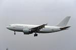 Gambardierさんが、伊丹空港で撮影したリージョン・エア A310-304の航空フォト(写真)