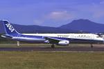 こうきさんが、函館空港で撮影した全日空 A321-131の航空フォト(写真)