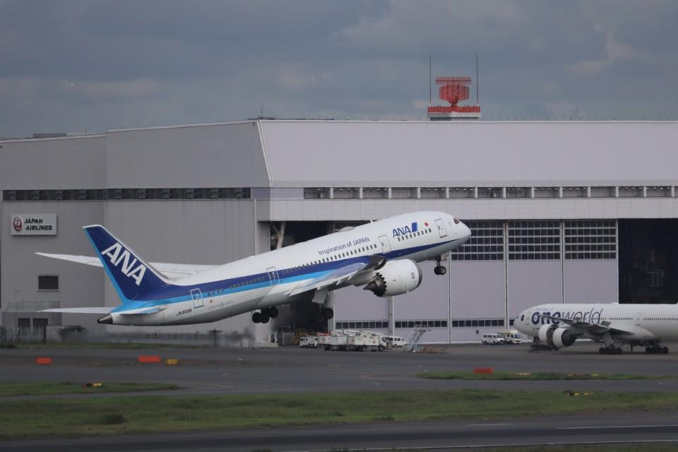 KAZFLYERさんの全日空 Boeing 787-8 Dreamliner (JA809A) 航空フォト
