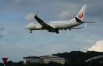 アングリー J バードさんが、福岡空港で撮影した日本航空 737-846の航空フォト(写真)