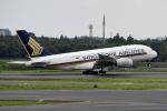 Cozy Gotoさんが、成田国際空港で撮影したシンガポール航空 A380-841の航空フォト(写真)