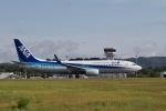 344さんが、広島空港で撮影した全日空 737-8ALの航空フォト(写真)