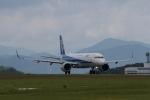 344さんが、広島空港で撮影した全日空 A321-272Nの航空フォト(写真)