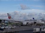 Tomo@RJFKさんが、鹿児島空港で撮影した日本航空 787-8 Dreamlinerの航空フォト(飛行機 写真・画像)