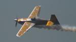 SVMさんが、幕張海浜公園で撮影したRed Bull Air Race Edge 540 V3の航空フォト(写真)