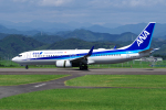 yabyanさんが、静岡空港で撮影した全日空 737-881の航空フォト(写真)