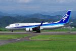 yabyanさんが、静岡空港で撮影した全日空 737-881の航空フォト(飛行機 写真・画像)
