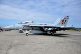 さくらの城南山。さんが、横田基地で撮影したアメリカ海軍 EA-18G Growlerの航空フォト(写真)
