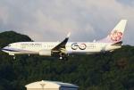 あしゅーさんが、福岡空港で撮影したチャイナエアライン 737-8SHの航空フォト(飛行機 写真・画像)